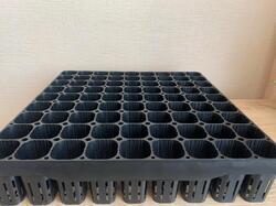 Лесные кассеты для выращивания саженцев деревьев
